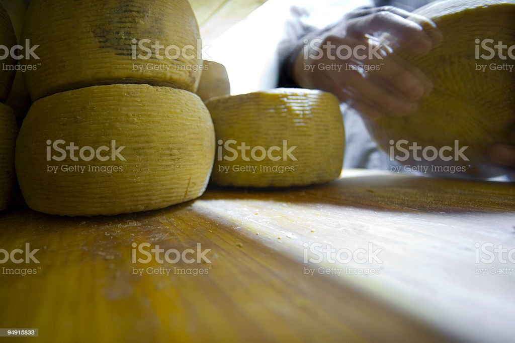 handling cheese royalty-free stock photo