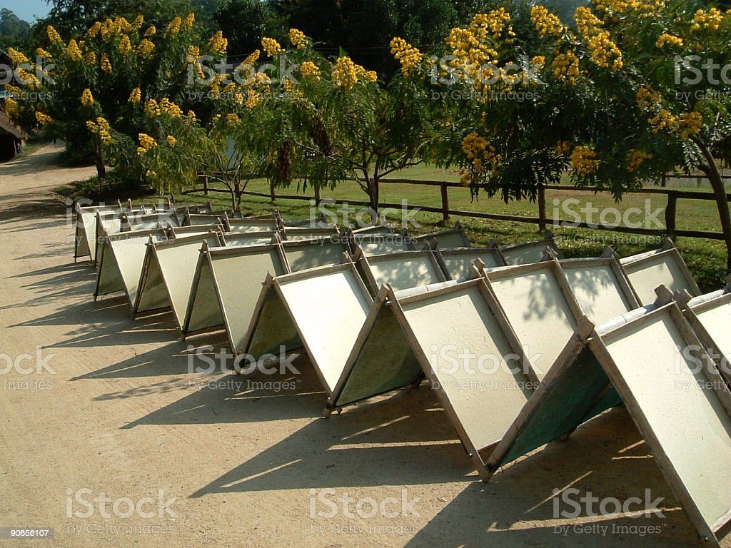 Hand-made Paper Drying royalty-free stock photo