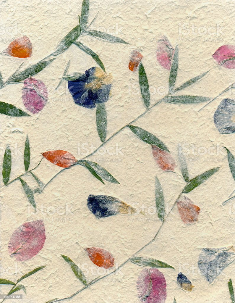 Handmade Papers - Pressed Flowers royalty-free stock photo