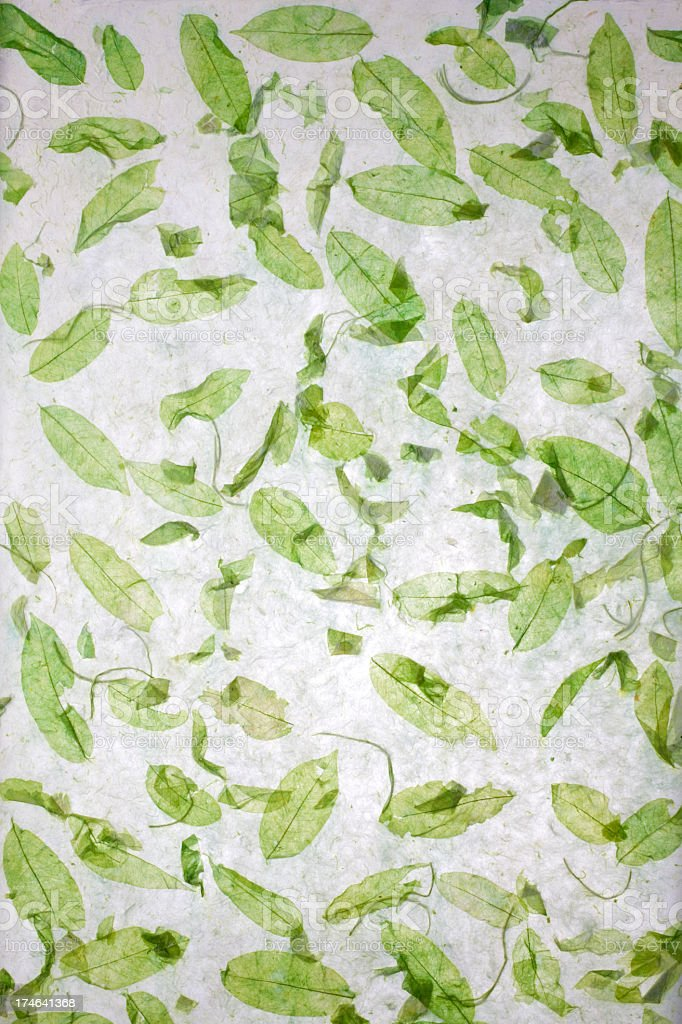 Handmade recycled leaf paper background. royalty-free stock photo