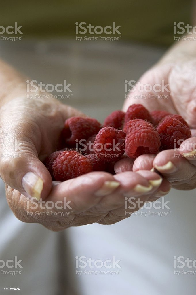 Hands and berries royalty-free stock photo
