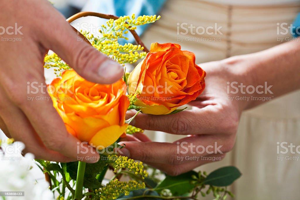 Hands arranging fresh cut flowers in vase stock photo