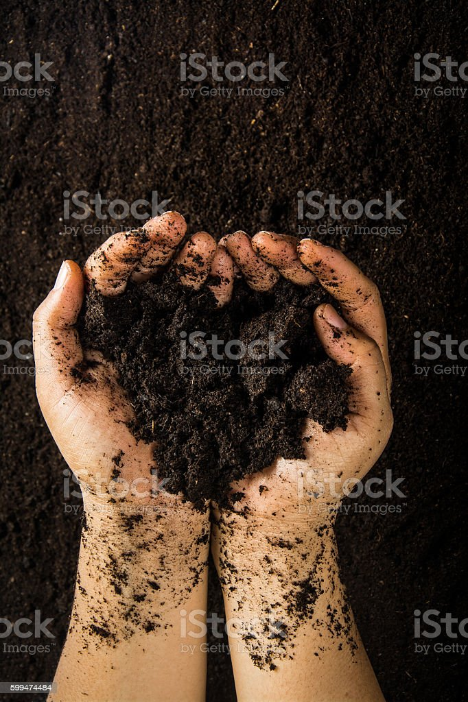 Hands dirty with clay , soil background stock photo