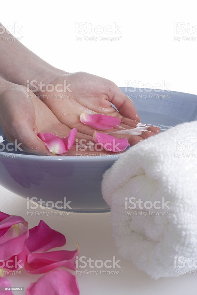 hands for rose petal bowl royalty-free stock photo
