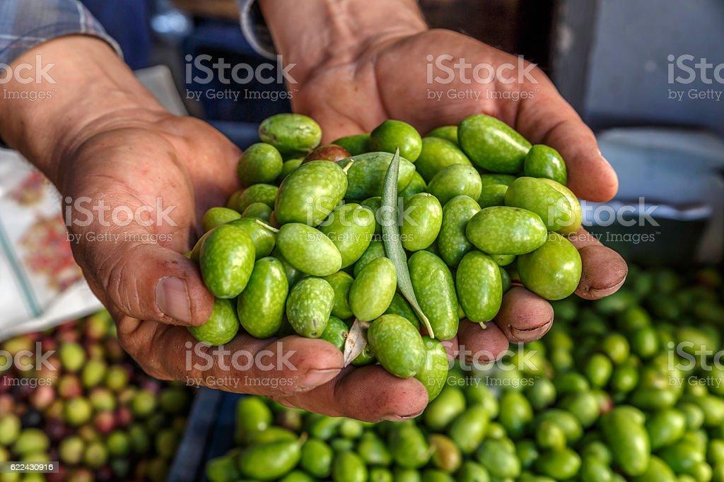 hands full green olives stock photo