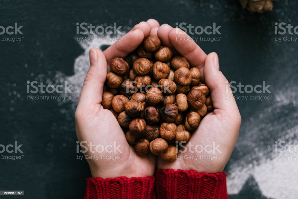 Hands full of hazelnuts, close up, top view stock photo