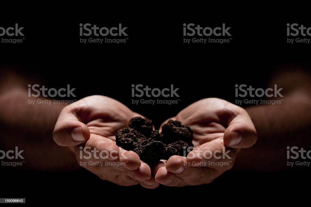 Hands full of truffles over black background stock photo