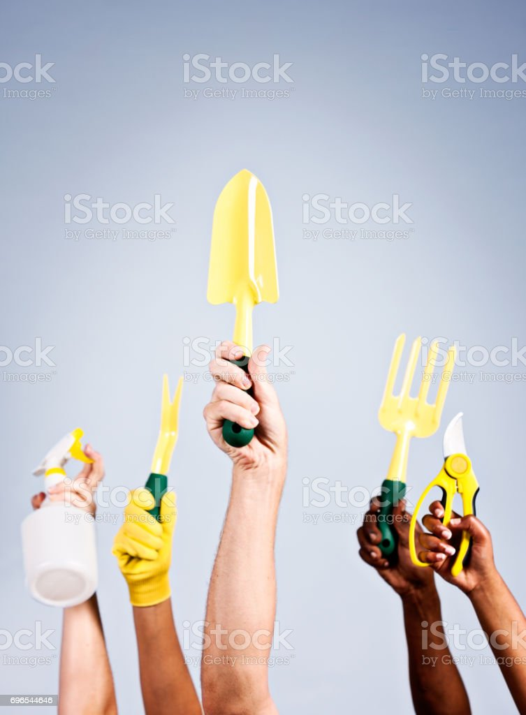 Hands hold aloft a variety of garden tools stock photo