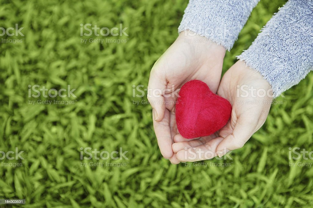 Hands holding a small felt heart over grass royalty-free stock photo