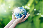 Hands holding and protect earth on nature background