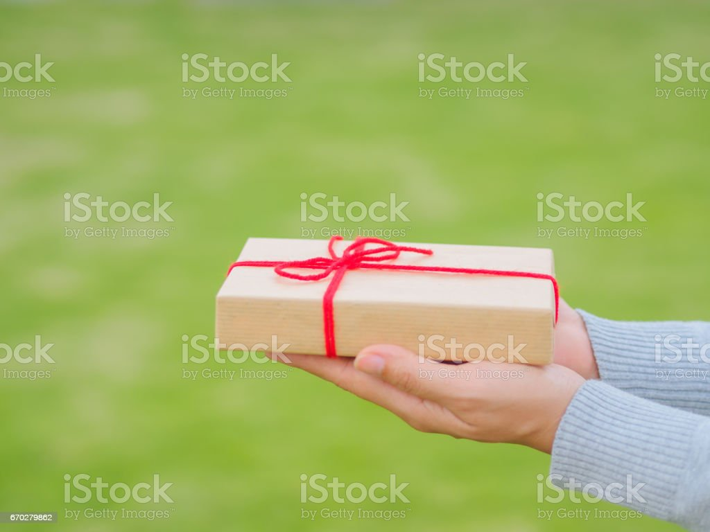 Hands holding beautiful gift box, female giving gift, Christmas...