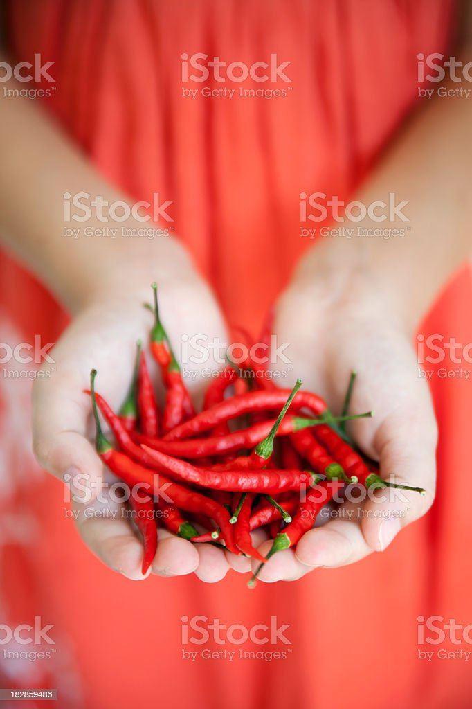 Hands holding chili peppers royalty-free stock photo