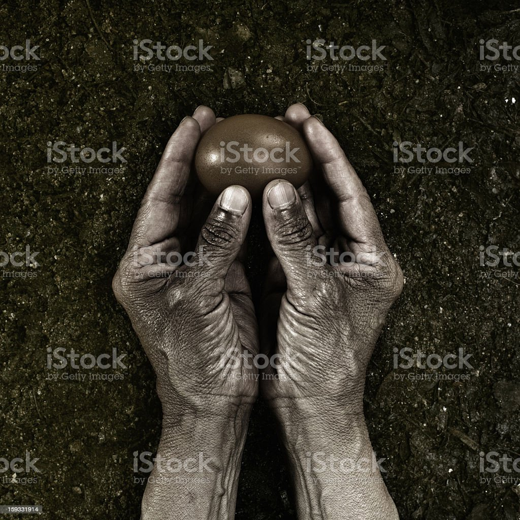 Hands Holding Egg royalty-free stock photo