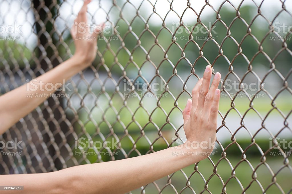 Hands holding on chain link fence stock photo