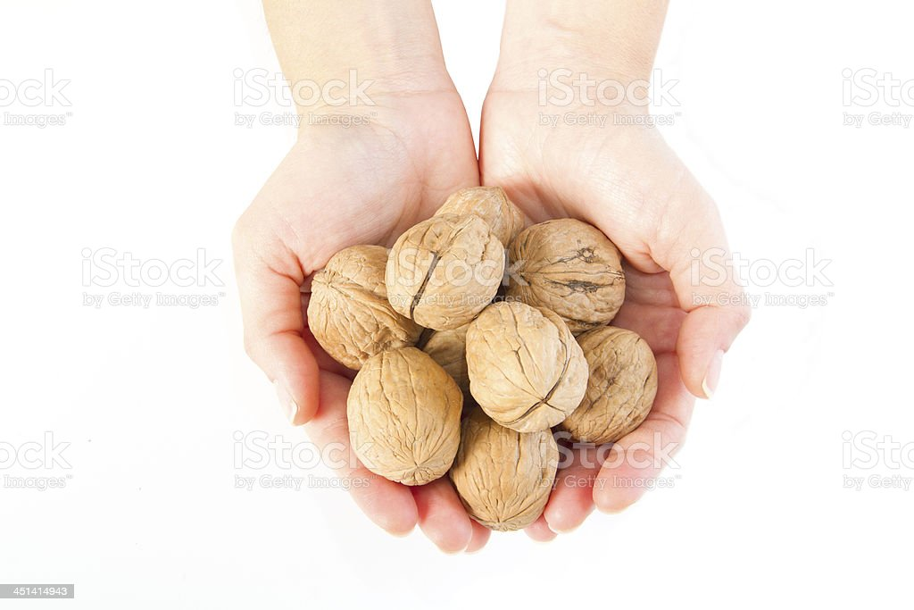 hands holding one walnut on white royalty-free stock photo