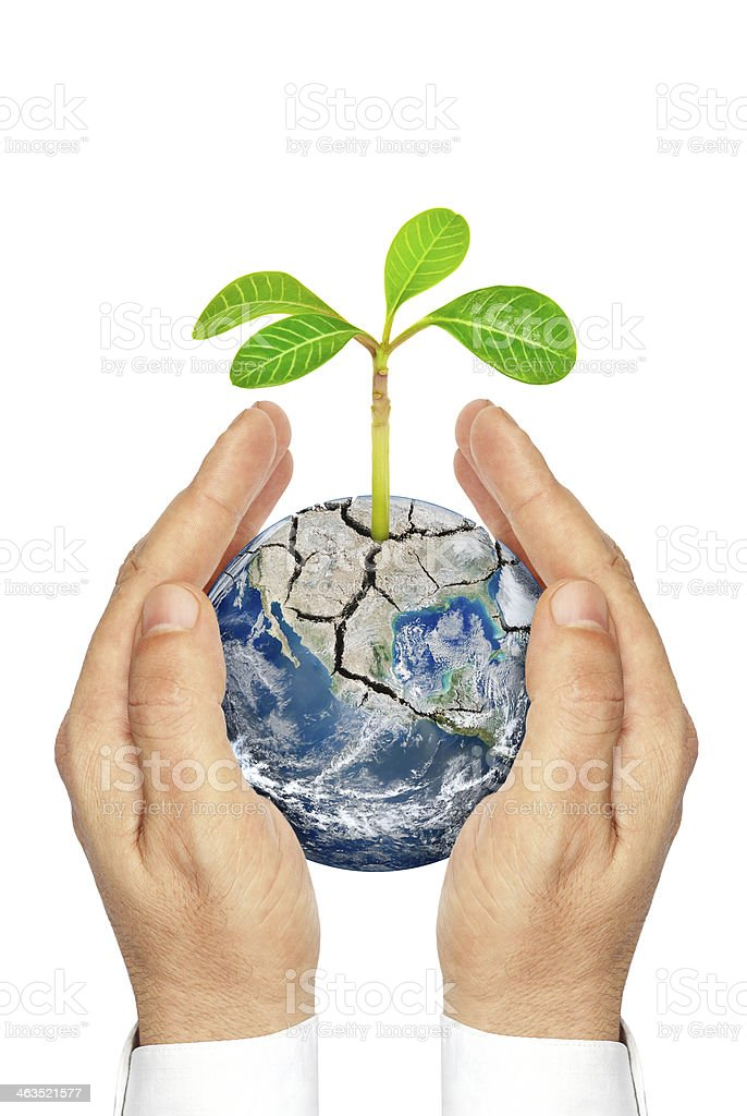 Hands holding planet earth with plants isolated on white background. stock photo