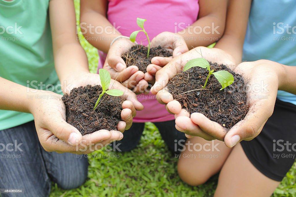 Hände holding Pflanze in schmutzabweisende Oberfläche Lizenzfreies stock-foto
