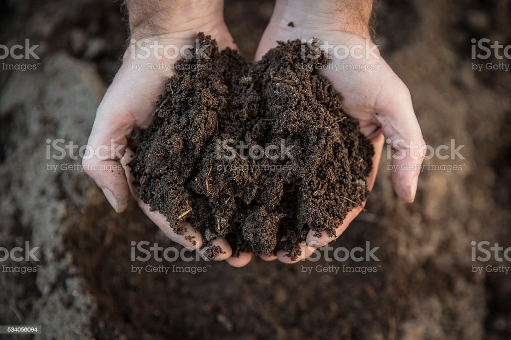 Hands holding soil in agricultural field stock photo