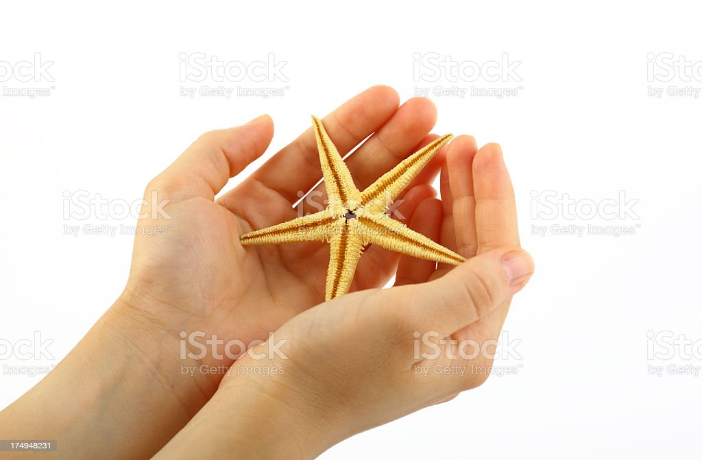 Hands holding starfish stock photo