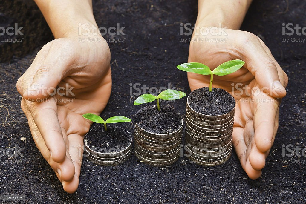 hands holding tress growing on coins stock photo