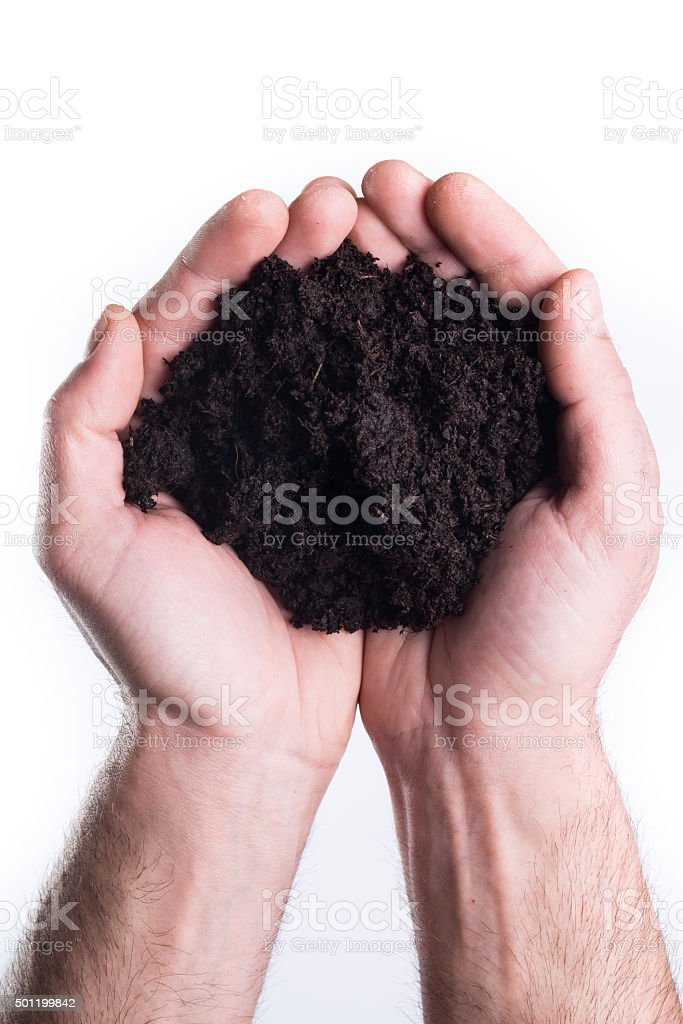 Hands holds topsoil stock photo