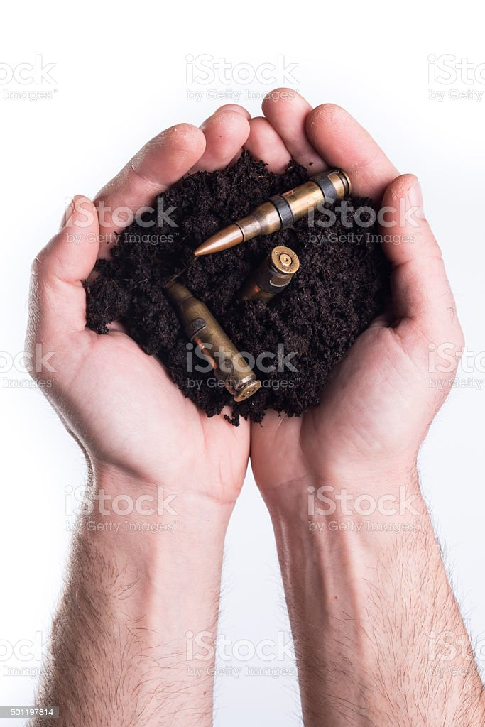Hands holds topsoil with bullets stock photo