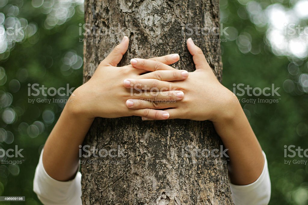 Hands hugging a trunk stock photo