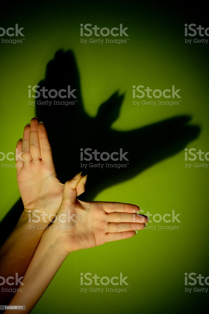 Hands in the dark making shadow puppets royalty-free stock photo