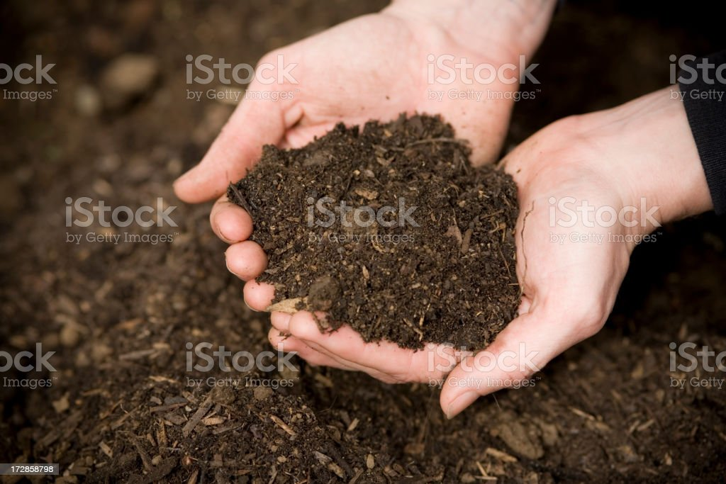 Hands in the Dirt royalty-free stock photo