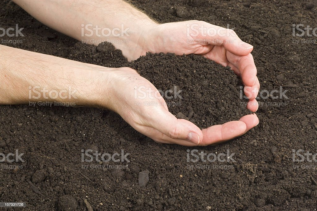 Hands In The Garden royalty-free stock photo