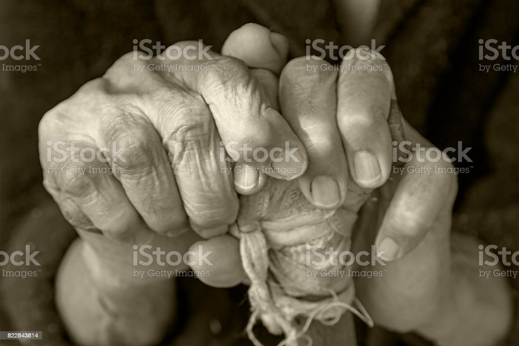 Hands of an elderly woman on a cane stock photo