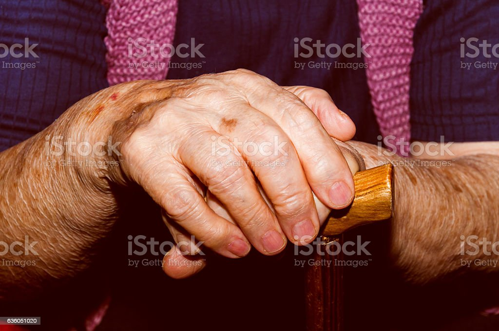 Hands of old lady with walking stick. stock photo