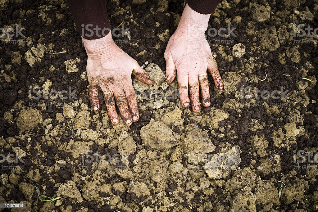 hands on the ground royalty-free stock photo