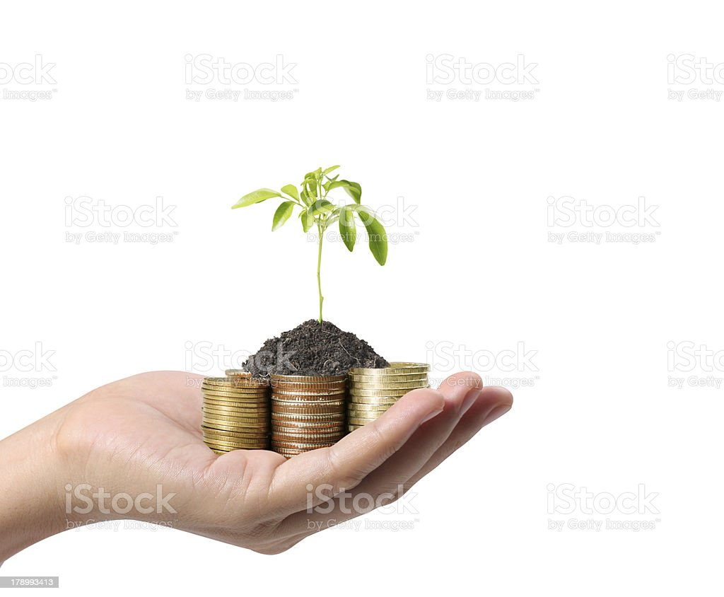 Hands Protect Your and plant royalty-free stock photo