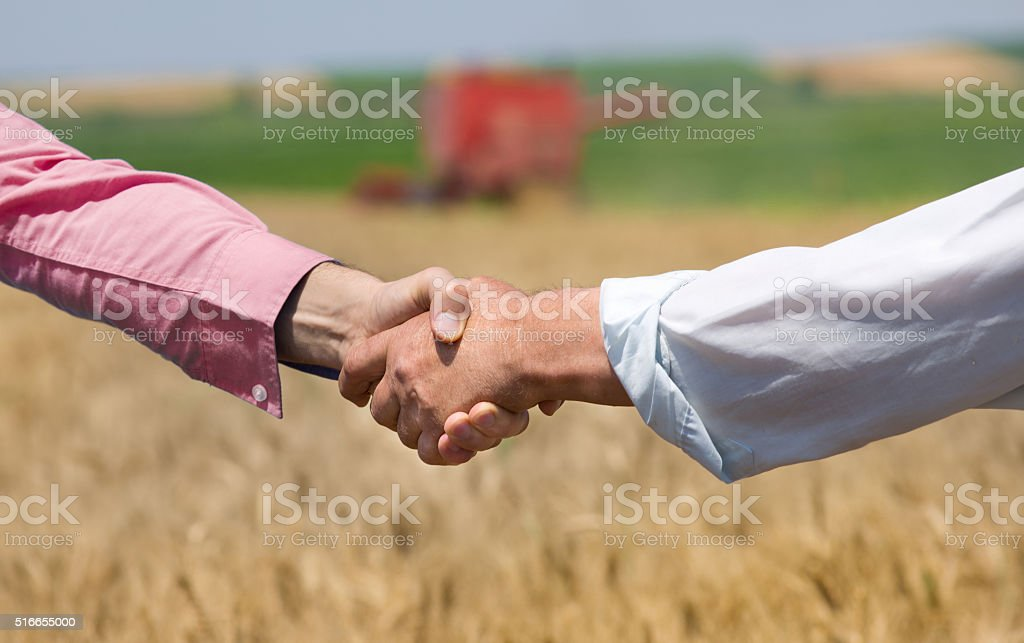Hands shaking in the field stock photo