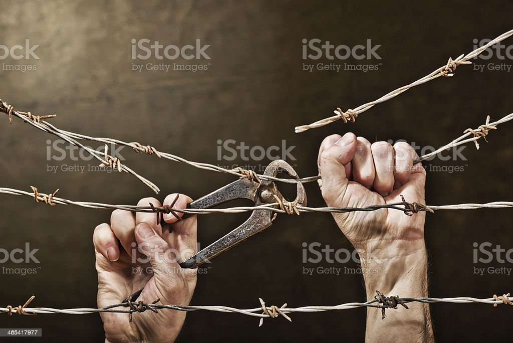 hands with barbed wire stock photo