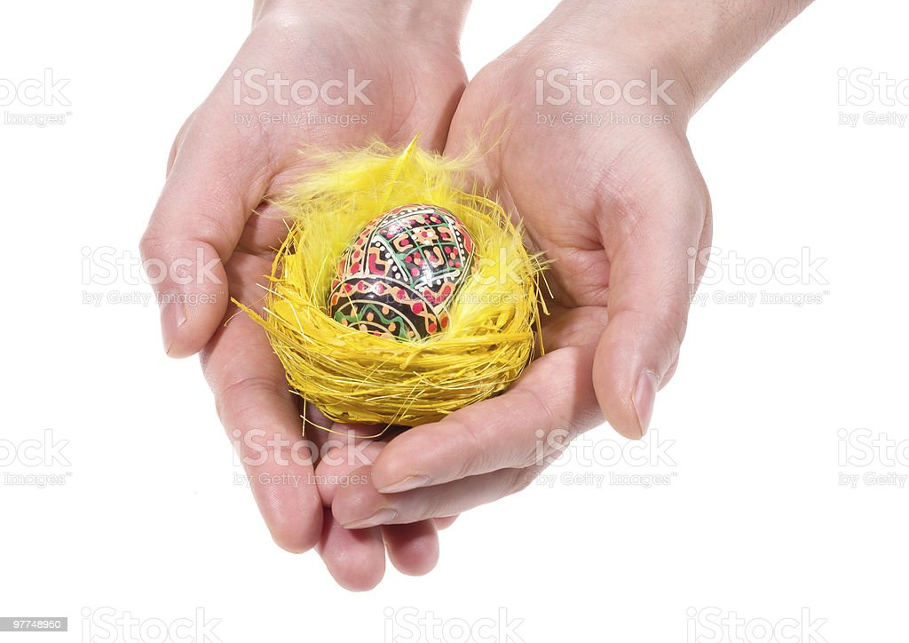 hands with Easter egg in a nest stock photo