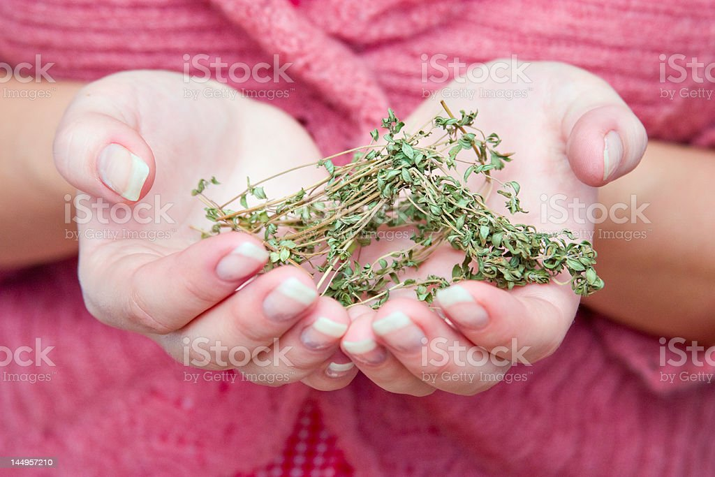 Hands with grass royalty-free stock photo