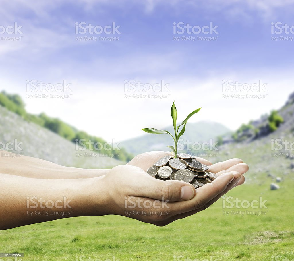 hands with money and plant stock photo