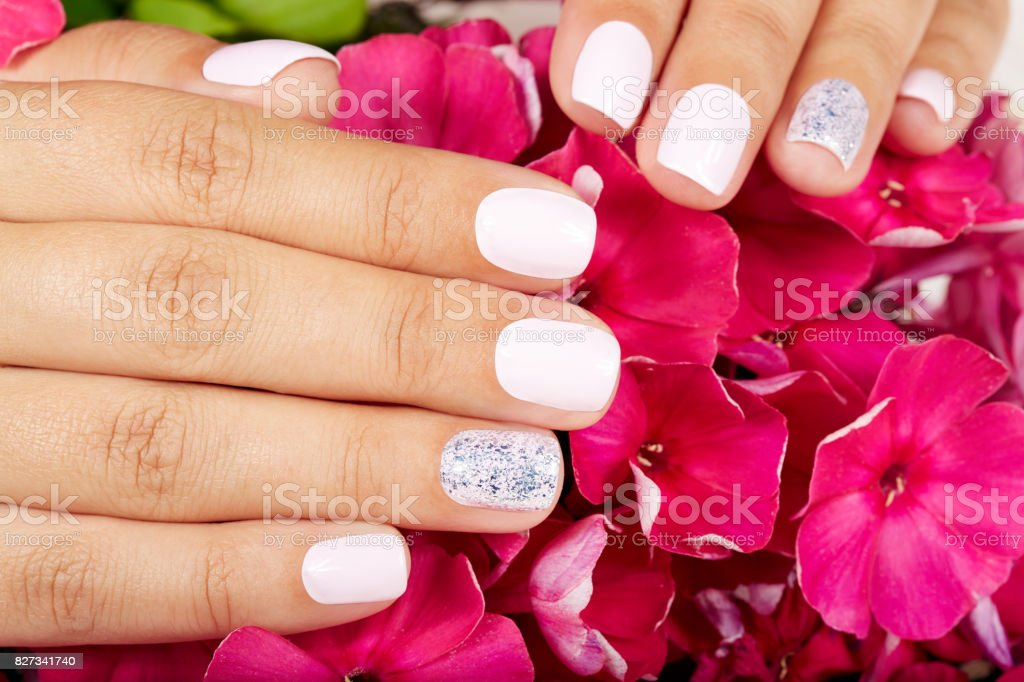 Hands with short manicured nails colored with white nail polish