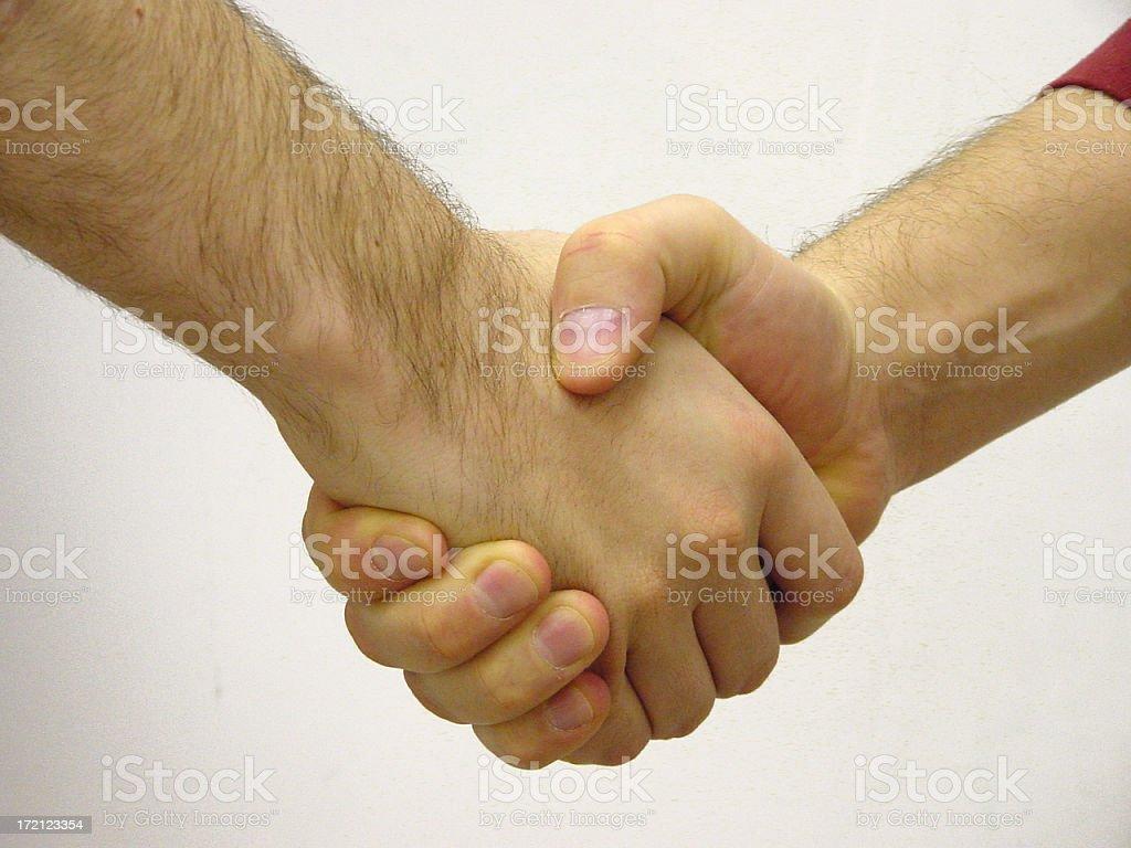 handshake_2 royalty-free stock photo