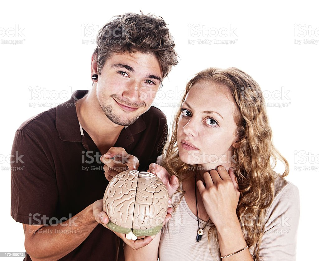 Handsome couple intrigued by anatomical model of brain stock photo