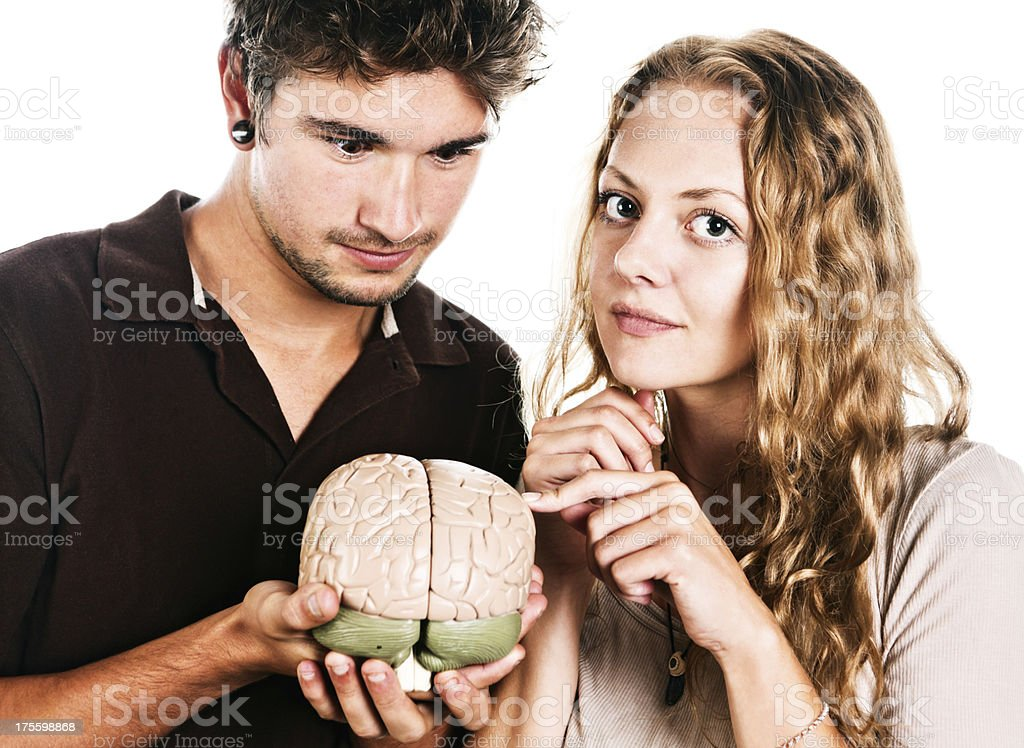 Handsome couple studying anatomical model of human brain stock photo