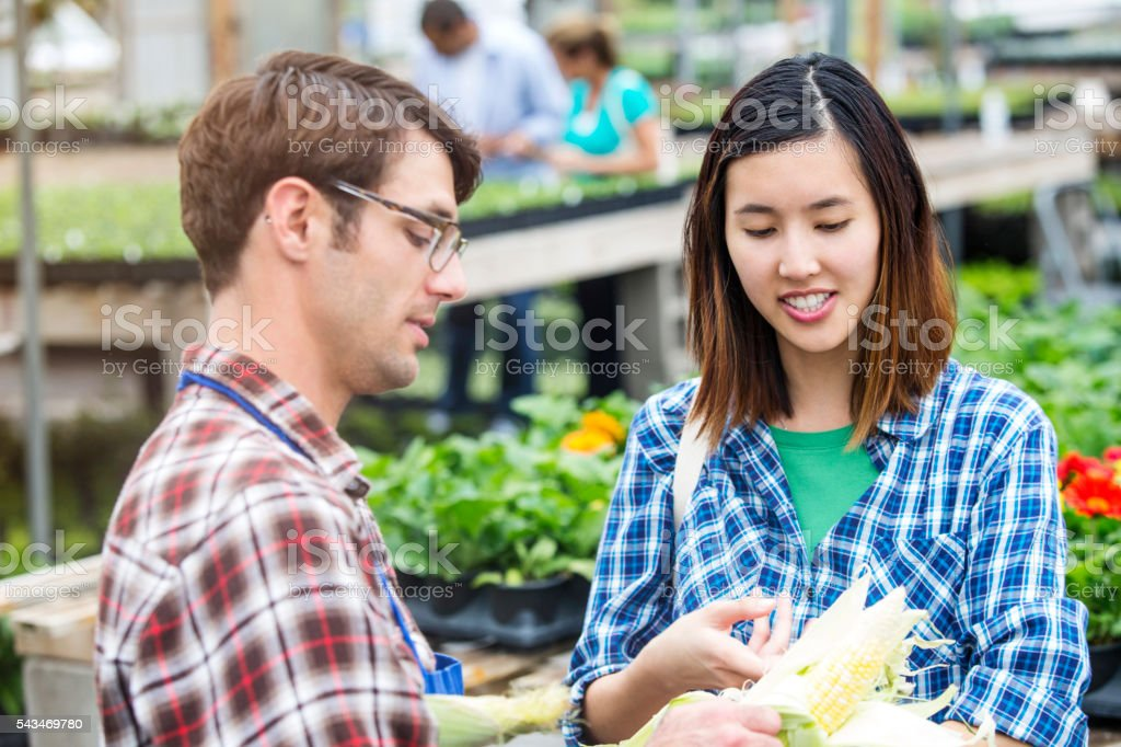Handsome employee opening up fresh corn to show customer stock photo