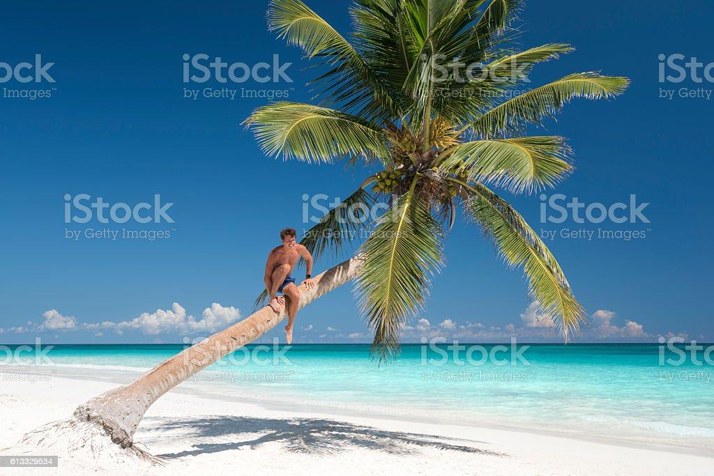 Handsome Man climbing a Palm Tree, Tropical Dream Beach stock photo