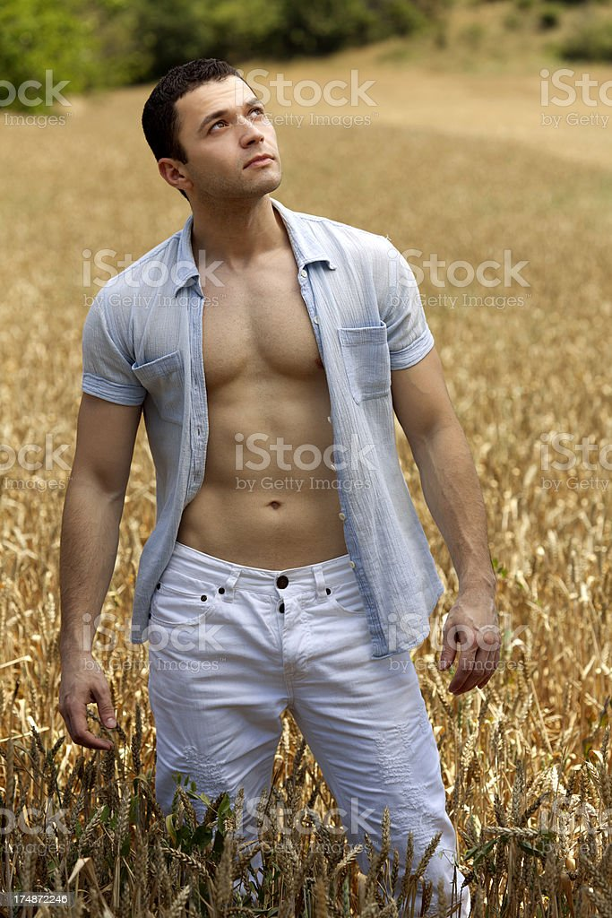 handsome man in field stock photo
