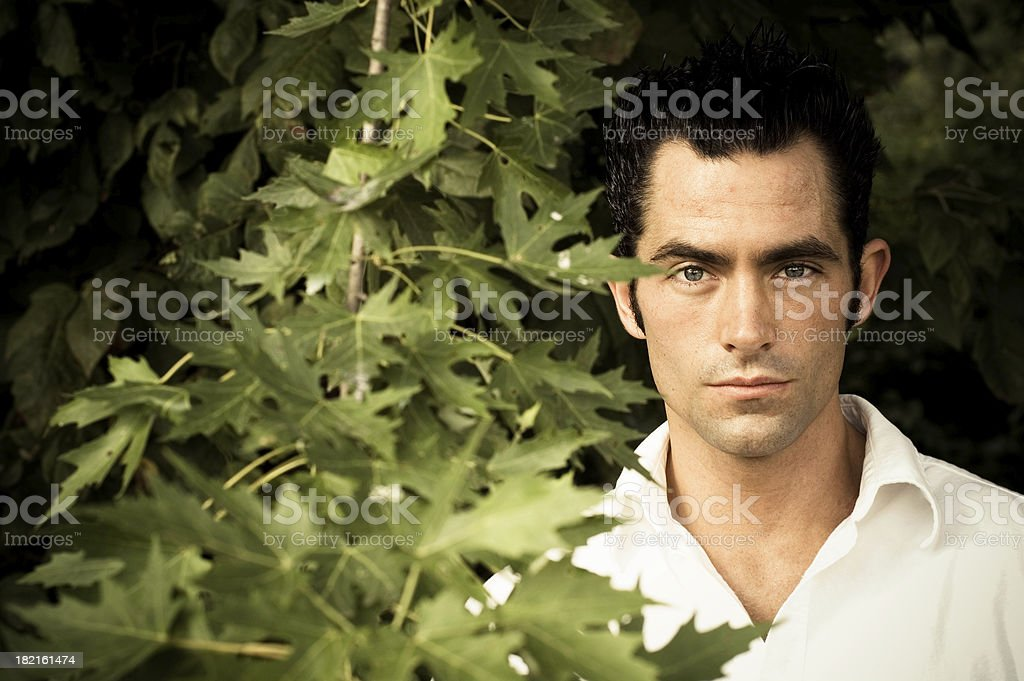 Handsome Man in the trees stock photo