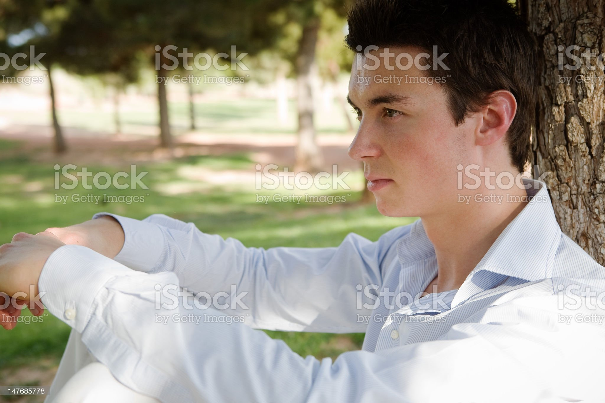 Handsome man sitting under a tree royalty-free stock photo