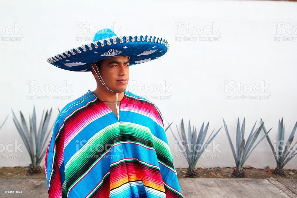 handsome mexican man charro hat serape agave stock photo