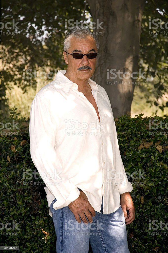 Handsome Senior Man royalty-free stock photo